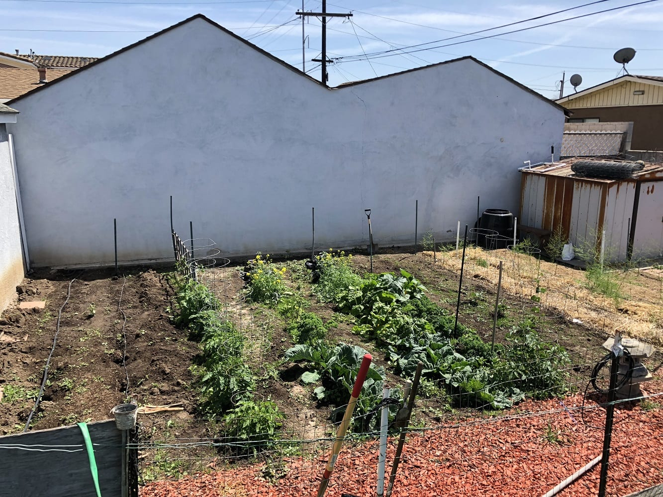 Home Sustainable Farming